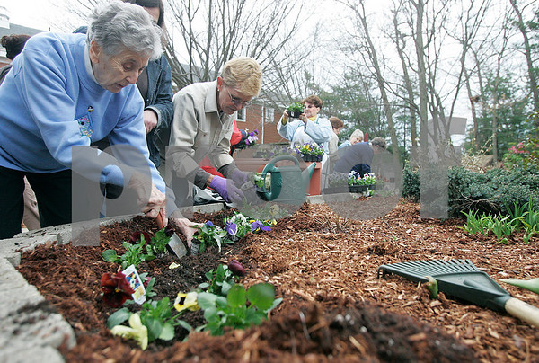 """Beverly: Claire Ross a patient, works on planting flowers at Ledgewood Rehabilitaion and Skilled Nursing Center, with the help of Mary Loe Ferriero of he Beverly Garden Club. The club was working with patients at Ledgewood to celebrate Earth Day by planting  flowers in the center's """"healing garden.""""  Photo by Mark Lorenz/Salem News"""