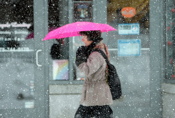 Salem: A woman uses an umbrella during Tuesday's snow storm, while walking along Essex Street. Photo by Mark Lorenz/Salem News