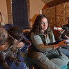 Ipswich: Joni Soffron, left, Nicole Pelechowicz, and Z Soffron take care of new 17-day-old wolf pups at Wolf Hollow.  photo by Mark Teiwes / Salem News