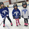 Gloucester: Danvers youth hockey players 11-year-old Taylor Farrin, left, Shea Nemekal, 6, and her sister Catie, 7. photo by Mark Teiwes  / Salem News