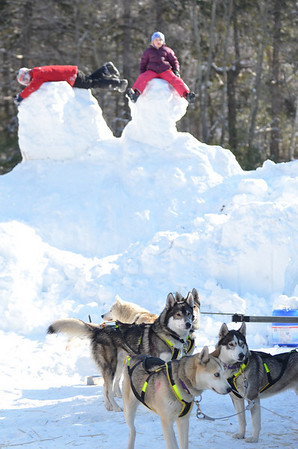 Ipswich: 9 -year-old Pierce Crocker of Topsfield, left, and Polly White, 7, of Hamilton play of a hill of snow as a team of Siberian huskies wait between races.  photo by Mark Teiwes  / Salem News