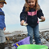 Beverly: Beverly:  Madison Bowen, 5, of Beverly catches a small tidepool crab with her brother Logan, 3, at Dane Street Beach. photo by Mark Teiwes / Salem News photo by Mark Teiwes / Salem News