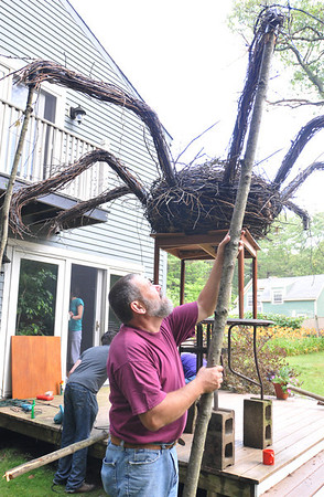 "Hamilton: Michael Lee attaches a 10 foot long leg to Allan Brockenbrough's spider he created for ""Art Grows Here"".   photo by Mark Teiwes / Salem News"