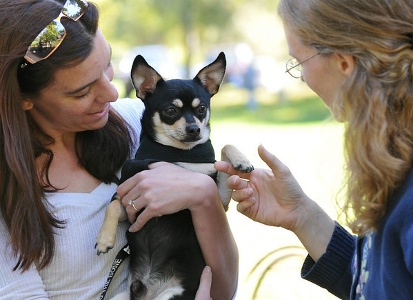 Danvers: Rachel Lemieux of Danvers, left, holds Diesel her chihuahua as it is blessed by Rev. Thea Keith-Lucas of Calvary Episcopal Church.