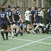 Danvers: St. John's Prep rugby team celebrates a successful try scored by Connor McLaughlin on Bishop Hendricken of Rhode Island. photo by Mark Teiwes / Salem News