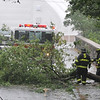 Salem:  Salem Fire Department responds to a branch on Winter Island Road during Tropical Storm Irene.   photo by Mark Teiwes / Salem News