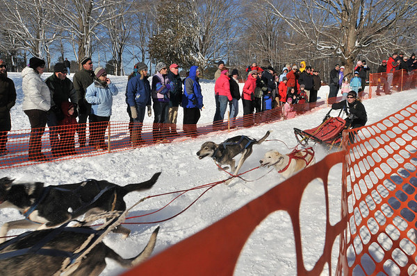 Ipswich: Meg Mizzoni competes in the Myopia Sled Dog Races  photo by Mark Teiwes  / Salem News