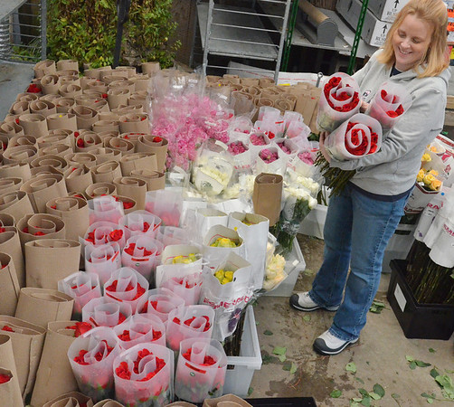 Beverly:  Kim Ward-Sutherland of Ward's Florist & Greenhouse said the company ordered over 10,000 roses to be ready for Valentine's Day.  photo by Mark Teiwes / Salem News