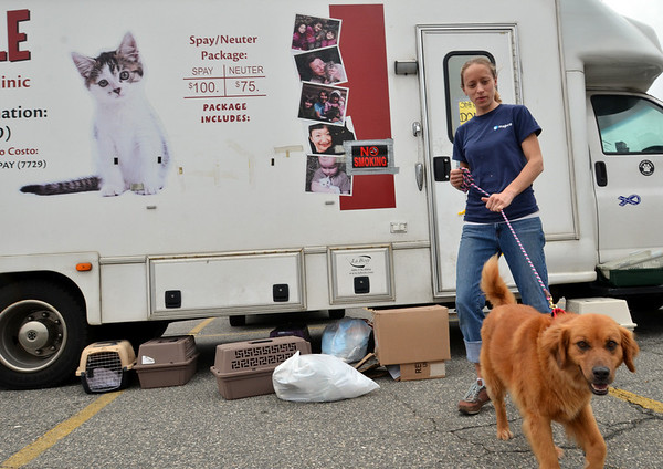 Peabody: Veterinary technician Lisa Adrejczyk of Newburyport brought her foster dog to work with her a the the Catmobile, a spay/neuter clinic for cats operated by the Merrimack River Feline Rescue Society.  photo by Mark Teiwes