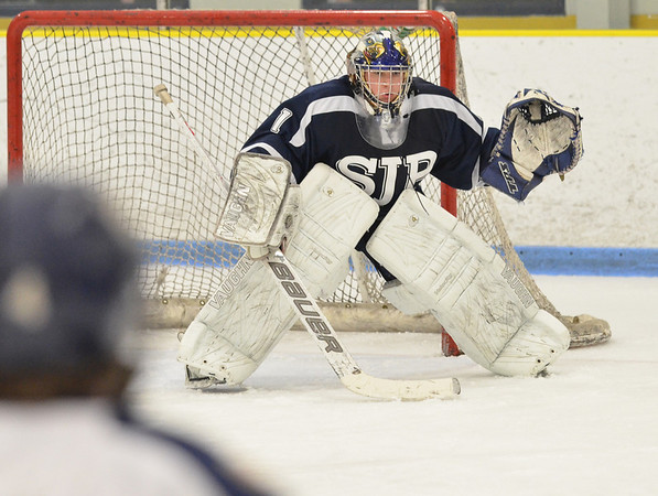 Malden: St. John's Prep goalie David Letarte.  photo by Mark Teiwes  / Salem News