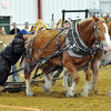 Topsfield:  Joe Tucker, of Seekonk, MA drives his horses Jack and Dan pulling 8000 lbs. in the 3300 class of the horse pull competition.