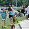 Danvers: Dog owners show off their dogs at a dog show raising money for Strays in Need.  photo by Mark Teiwes / Salem News