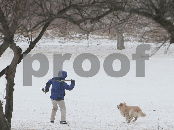 Salem: A man reaches back to throw a stick for a dog while out walking through Salem Willows during a Sunday afternoon snowstorm. Photo by Matthew Viglianti/Staff Photographer Sunday, March 1, 2009.