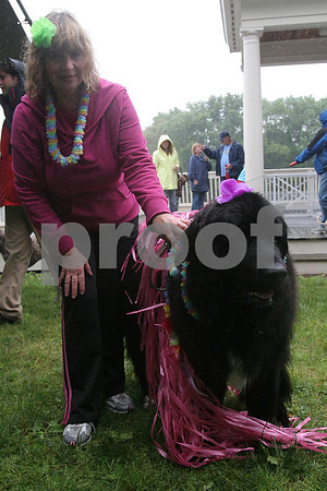 Danvers: Carole McLaughlin of Danvers with her dog, a 5-year-old Newfoundland named Kayla, at the Danvers Family Festival Dog Party on Sunday. Photo by Matthew Viglianti/Staff Photographer Sunday, June 21, 2009.