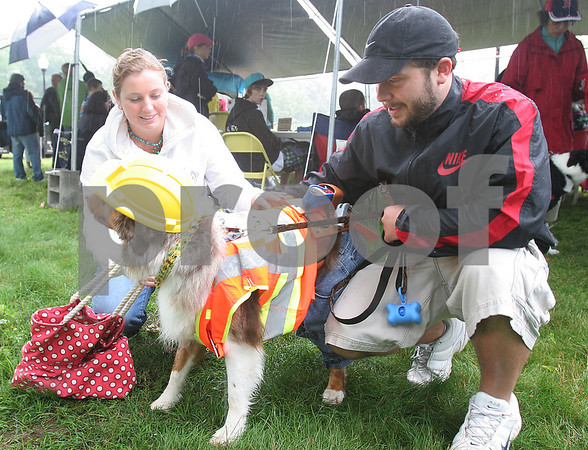 Danvers: Jenna Melvin and Jared Newbegin of Danvers with Brody, an Australian shephard, at the Danvers Family Festival Dog Party on Sunday. Brody is dressed as a construction worker to reflect the renovations being done to Town Hall in Danvers. Photo by Matthew Viglianti/Staff Photographer Sunday, June 21, 2009.