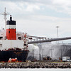 Salem: The CSL Argosy delivers the last shipment of coal to the Salem Power Plant on Thursday afternoon. David Le/Salem News