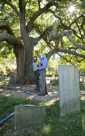 Salem:<br /> Chris Wood, left, and John Zannino discuss how they will remove a large tree limb that fell, but is still attached to the tree trunk, at the Old Burying Point Cemetery in Salem.<br /> Photo by Ken Yuszkus, The Salem News, Wednesday, September 25, 2013.