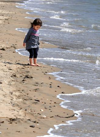 KEN YUSZKUS/Staff photo. Rose Alpuerto, 3, of Peabody walks barefoot near the waves lapping the shoreline of Dane Street Beach in Beverly Monday morning.