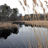 Ken Yuszkus/Staff photo: Wenham: The Miles River flows through Wenham.