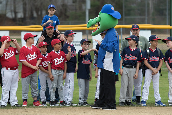 CASEY OLIVER/photo. Peabody West Little Leaguers high five their mascot during the opening ceremony of the PWLL Jamboree on Friday evening. 4/22/16.