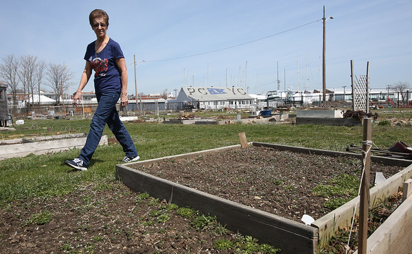 Cindy Rhodes is one of the organizers of Salem Community Gardens