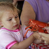 KEN YUSZKUS/Staff photo.    Charlotte Rojotte, 2 1/2, examines a lobster at the Lobster Festival held at Lynch Park.  08/03/16
