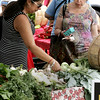 KEN YUSZKUS/Staff photo.         Patria Berges, left, and Anne Pofcher, both of Beverly looks over vegetables at the Beverly Farmers Market.  08/01/16