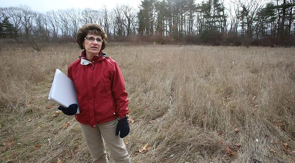 KEN YUSZKUS/Staff photo.   Judith Lincicum talks about the overgrown field at Lebel's Grove in Danvers.  12/21/15.