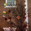 Beach balls get stuck in a tree after being dropped into the crowd during Beverly's New Year's celebration on Cabot Street. 12/30/16