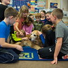 Jared Charney / Photo 2nd Graders at Horace Mann Elementary School get some time with therapy dog Patrick, Thursday, December 8, 2016.
