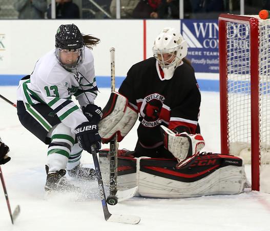 Endicott Women's Hockey vs Wesleyan