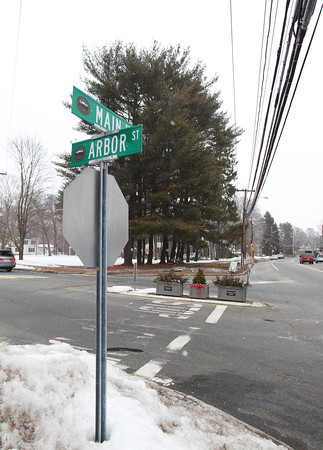 The Town of Wenham is proposing to cut the pine trees on the car barn lot at the corner of Arbor and Main Streets down. DAVID LE/Staff photo 2/27/14