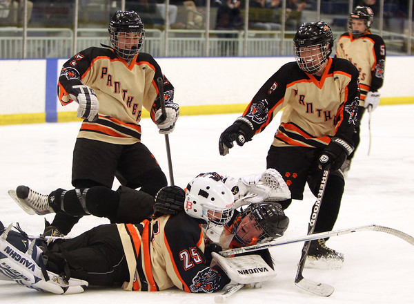Beverly defenseman Caitlin McBride (20) and goalie Madison Jalbert (25) celebrate the Panthers 3-2 win over Hingham as sophomores Anna Hayden (2) and Anna O'Neill (9) rush over to join the celebration. DAVID LE/Staff Photo 3/1/14