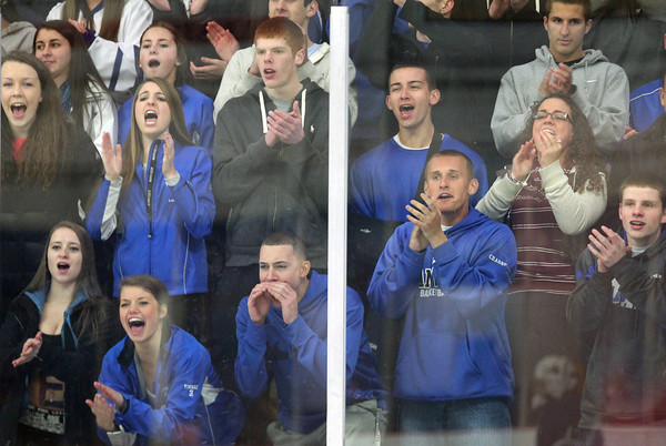 Danvers fans loudly cheer on the Falcons as they took on Beverly on Friday evening in the D2 North Quarter Finals at Stoneham Arena in Stoneham. DAVID LE/Staff Photo 2/28/14
