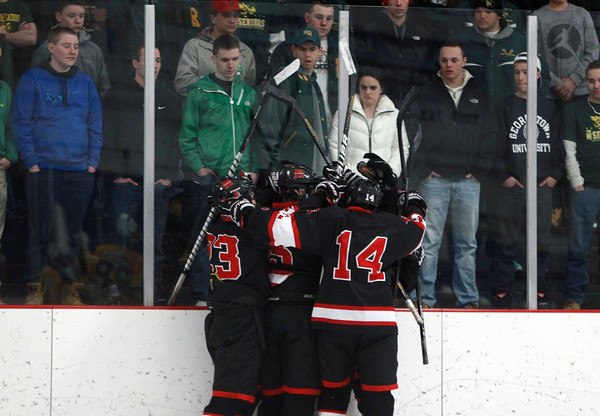 Marblehead celebrates sophomore centerman Matt Koopman's goal against the boards in front of a few disgruntled North Reading fans during the first period of play on Friday evening in the D2 North Quarter Finals. DAVID LE/Staff Photo 2/28/14