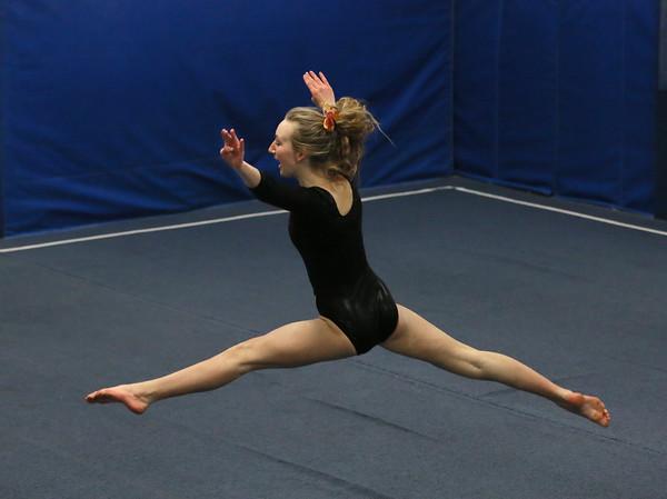 Ipswich Gymnast