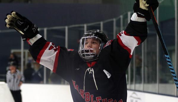 DAVID LE/Staff photo. Marblehead junior Braden Haley celebrates his second period goal against Danvers. 1/16/16.