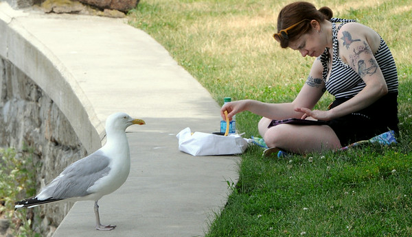 KEN YUSZKUS/Staff photo.  Katey Corrigan of Salem eats her lunch under the watchful eye of a seagull at Salem Willows. 7/01/14
