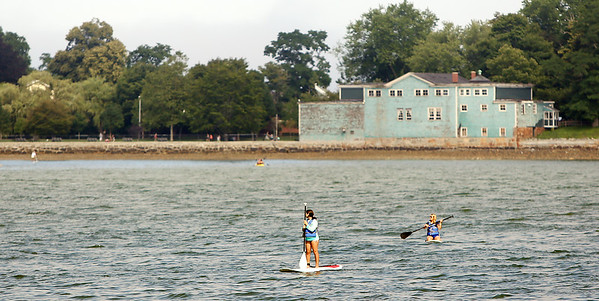 A couple paddle boarders surf the waters just off the shore of Lynch Park in Beverly on Monday afternoon. DAVID LE/Staff photo. 7/21/14.