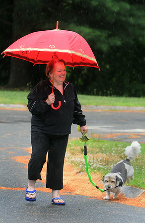 KEN YUSZKUS/Staff photo. I'Dea Crow-Well of Peabody takes her dog Toto for a walk in the rain.   7/4/14