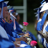Pink roses to honor Ms. Colleen Ritzer replaced the traditional white roses carried in by female graduates at the Danvers High School graduation on Saturday afternoon in Dr. Deering Stadium next to Danvers High School. DAVID LE/Staff photo. 6/7/14.