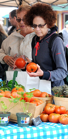 KEN YUSZKUS/Staff photo. Barbara Golden of Salem examines tomatoes before purchasing them at one of the stands on the opening day of the farmers market, now in its 6th season.    6/12/14.