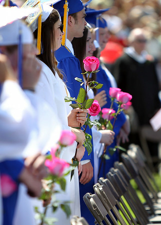 A sea of pink roses to honor Ms. Colleen Ritzer replaced the traditional white roses carried in by female graduates at the Danvers High School graduation on Saturday afternoon in Dr. Deering Stadium next to Danvers High School. DAVID LE/Staff photo. 6/7/14.