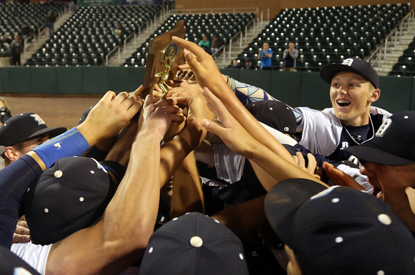 DAVID LE/Staff photo. The Danvers Falcons celebrate their 9-4 win over Reading in the D2 North Championship game at LeLacheur Park in Lowell on Sunday evening. 6/11/16.