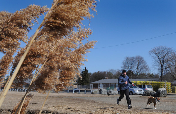 Ken Yuszkus/Staff photo: Salem:  Ryan McCarthy and his dog Nashville run near Collins Cove in Salem.