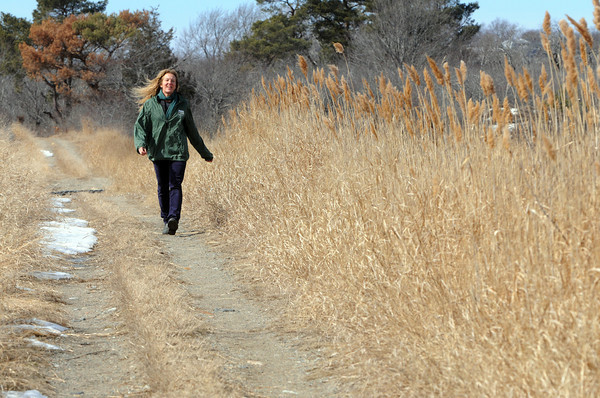 Ken Yuszkus/Staff photo: Ipswich:  Dorothy Antczak is the field education program manager at the Crane Estate, where they are starting a new outdoor adventure program, to take families on hikes through the Crane Wildlife Refuge. She is walking the Cedar Point Trail.