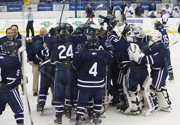 KEN YUSZKUS PHOTO: St. John's Prep rejoices after winning the St. John's Prep vs Springfield Cathedral semifinals.