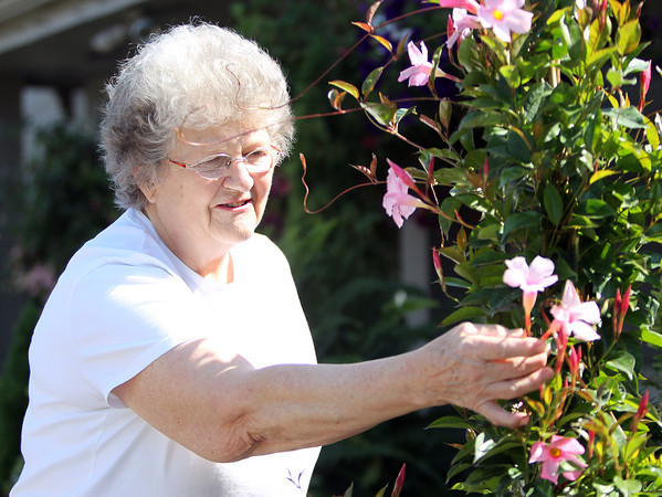 Beverly resident Janice Innocenti closely examines some fresh blooms outside The Leonard's Florist on Corning Street in Beverly on Wednesday afternoon. DAVID LE/Staff photo. 5/14/14.