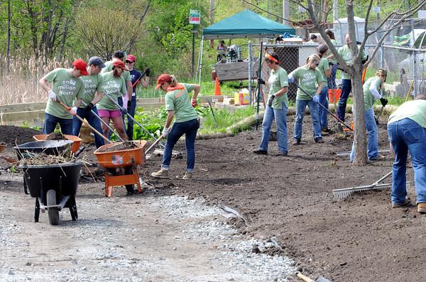 KEN YUSZKUS/Staff photo.  Volunteers from Timberland in Stratham NH are working on Putnamville Park in Danvers.        5/15/14