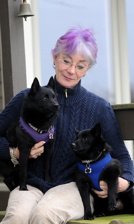 JIM VAIKNORAS/Staff photo Sharon Shea with her dogs, Cricket on the left and Black Magic. Shea and the dogs were resently attacked by a coyote near her Salem home.